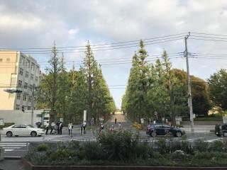 放射線状に伸びた商店街が特徴的な慶應義塾大学のある日吉駅をお散歩♪