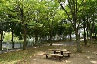 江田駅の住宅地と遺跡をぐるっとめぐり